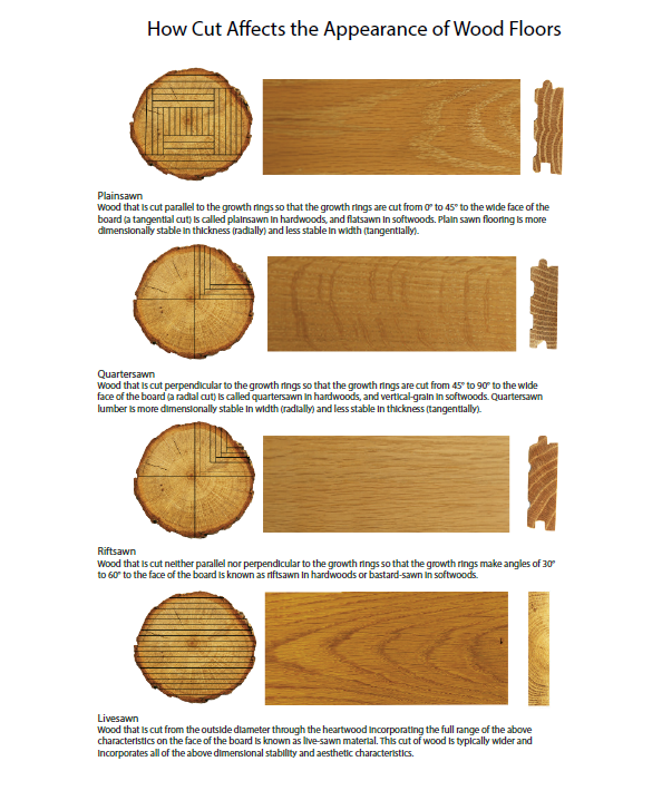 Cuts of Wood Diagram